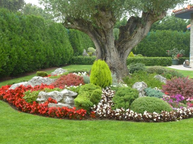 Jardiner a en lanzarote jardineros profesionales en for Equipo de jardineria